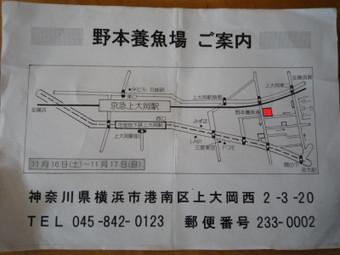 P1380747_2